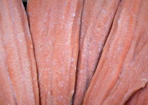 pesce-2954