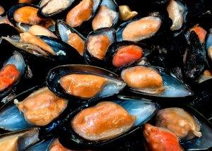 pesce-2981