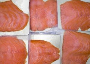 pesce-2897